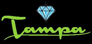 tampa jewelry and loan